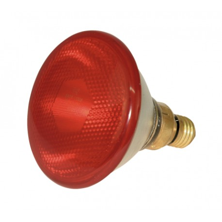 Infrared lamp 175W