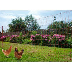 Orange electrified netting - Poultry