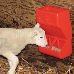 Mineral feeder for sheep 7 KG, red